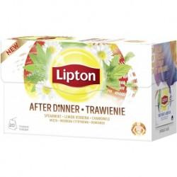 Lipton Herbata ziołowa Trawienie 20 torebek 32g
