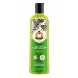 Bania Agafii Wzmacniająco-odżywczy szampon do włosów suchych i osłabionych Cedr 280ml