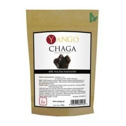 Yango Chaga Suplement diety 100g