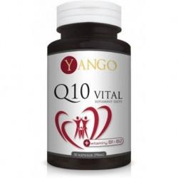 Yango Q10 Vital 290mg Suplement diety 30 kapsułek