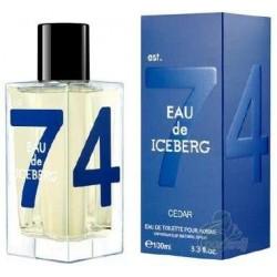 Iceberg Eau De Iceberg Cedar Woda toaletowa 100ml spray + Żel pod prysznic 100ml