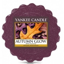 Yankee Candle Wax Wosk Autumn Glow 22g