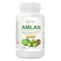 Wish Amlan Forte Max Plus Vitamin C Suplement diety Agrest Indyjski 120 kapsułek