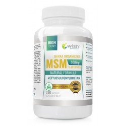 Wish Natural Formula MSM Siarka Organiczna & L - Leucyna Suplement diety 250 kapsułek